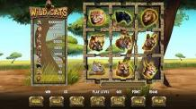 Wild Cats | Skill Game PA, USA | Prominentt Games