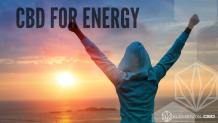 CBD For Energy | Does CBD Enhance energy? | Elemental CBD