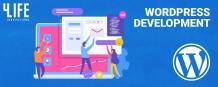 WordPress Development Company USA - WordPress Development Services