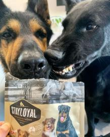 Yummy Natural Joint Health Treats for Dogs