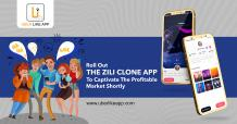 Implement a million-dollar business idea by launching a Zili Clone app
