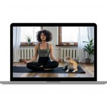 Zoom Meditation Classes