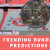 What Are the Trending Bundesliga Predictions Tips?