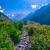 Valley of Flowers Trek Tour Package 2019 | Itinerary for Valley of Flowers National Park Uttarakhand India