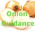 Why Onion Guidance Important For Daily Healthy Life