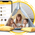 Uber for Babysitters, On-Demand Babysitting App Development