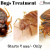 Pest Control Services in Bangalore | Bed Bugs Treatment | Housingsure