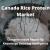 Canada rice protein market