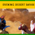 Desert Safari Deals Dubai - Cheap Tourism Company in Dubai