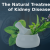 The Natural Treatment of Kidney Disease