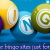 Playing online bingo sites just for its popularity - Delicious Slots