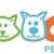 Buy Best-Quality Pet Stain Remover Online