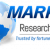Liothyronine Market Size by Product (Purity 87%, Purity 87%, Purity 88%, Other), By End User (Chemical Reagents, Pharmaceutical Intermediates, Other), By Region (North America, Europe, Asia-Pacific, Rest of the World), Market Analysis Report, Forecast 2020-2025   Marketresearch