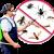 Chandigarh Pest Control | +919888994994