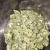 10 Things Everyone Hates About order weed online
