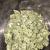 Buy Cannabis Online UK   Best Online Dispensary UK