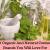 organic and natural cosmetics