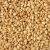 Natural/Organic Sesame Seeds Manufacturers, Suppliers & Exporters