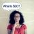 Hire best SEO Agencies in USA| Discreet Vision #SeoExperts