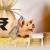 paypointindia csp