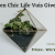 Green Chic Life Vois Giveaway