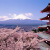 10 Things Steve Jobs Can Teach Us About japan travel tips