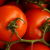 Free Farm Classified Ads - Agriculture Classified Ads, Organic Farmers Market in Massachusetts - Sustainable Gardening Ads - Farms near me