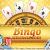 Bingo Sites New - Best online bingo review - know the importance