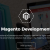 BCZ-What are the Advantages of Magento eCommerce Platform?