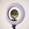"""Makeup Starter 12"""" LED Ring Light - Cosmetic Beauty Boutique"""