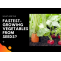 List of fastest-growing vegetables from seeds