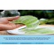 Aloe Vera Gel Manufacturing Process, Industry Trends, Project Cost, Plant Setup, Machinery Requirements, Raw Materials, Cost And Revenue 2021-2026 - The Market Writeuo