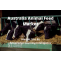 Australia animal feed market