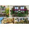 Balcony Garden Ideas and Tips for Your Home