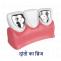 Dentist in Laxmi Nagar, Delhi   Healserv