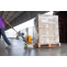 All that you need to think about Cargo Malaysia