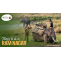 Things to do in Ramnagar | Corbett the Baagh