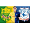FIFA ordered Cardiff to pay Nantes £5.3m for the transfer of Emiliano Sala