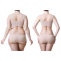 How Garcinia Cambogia Herbs Can Help You Reduce Weight And Belly Fat Fast. – Shree Herbal India