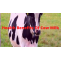 8 Medicinal Health Benefits Of Cow Milk Drinking For Baby