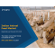 Indian Animal Feed Market Report, Trends and Forecast 2019-2024 | IMARC Group