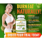 Shree Herbal India: Garcinia Cambogia: Safe for weight loss?