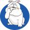 French Bulldog Skin Irritation Care