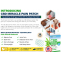CBD Miracle Pain Patch Updated* Reviews | DON'T Buy Before reading
