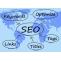 Search Engine Optimization Service in Delhi