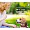 Emotional Support Dog benefits and process of a registration | ESA letter | PDSC - PDSC