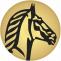 SUISSE BANK - Digital Offshore Banking