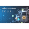 cybersecurity skills and factor